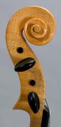 Side of pegbox on Hutchins violin