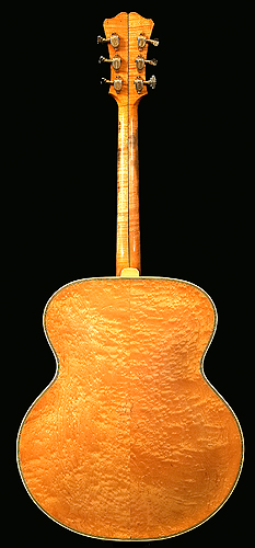 Back of D'Angelico guitar
