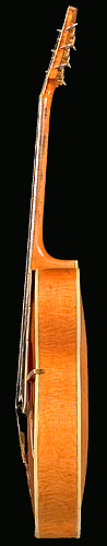 Treble side of D'Angelico guitar